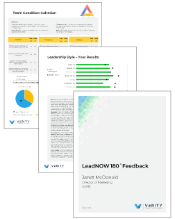 A few sample pages from the LeadNOW 180 report